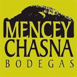 Bodegas Mencey Chasna